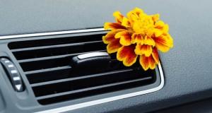 Faites la chasse aux odeurs dans votre voiture